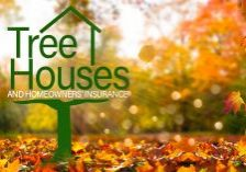 Home-Tree-Houses-and-Homeowners-Insurance